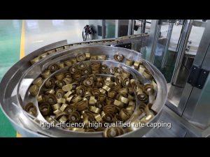 automatische servo-pistonsaus, honing, jam, vloeistofvullijn met hoge viscositeit