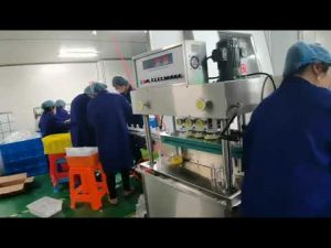 roterende vul- en sluitmachine