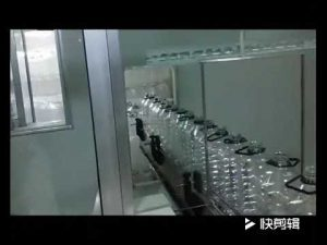 automatische mosterdolie, olijfolie, verpakkingsmachine voor het vullen van eetbare olie